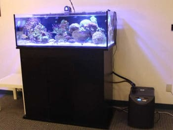 Best Aquarium Chiller